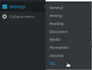 enable wordpress multisite ssl
