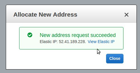 Allocate a new Elastic IP in your Amazon account