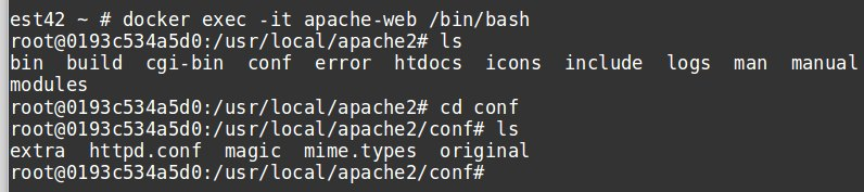 Edit the apache config file