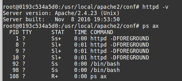 Apache processes running in Docker container