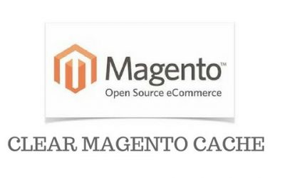 How to clear Magento cache to review website changes