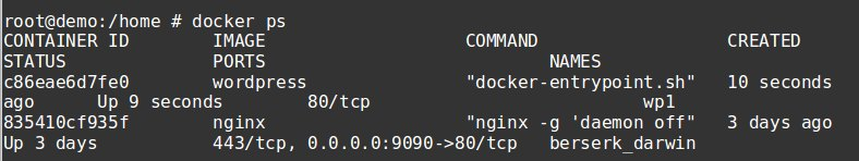 connect to docker container - lookup the id
