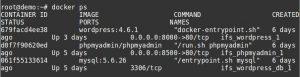 Docker backup - container list