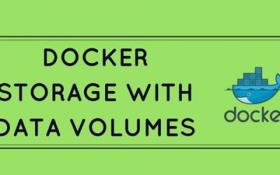 How to ensure persistent Docker storage using data volumes