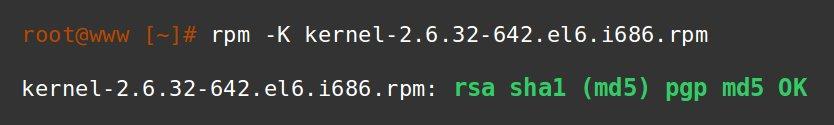 how to secure a server - RPM verification