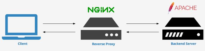 Litespeed vs Apache - Litespeed replaced with Nginx